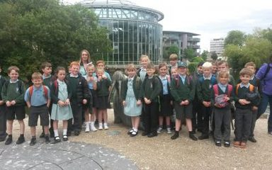 Y3 visit Sunderland Museum and Winter Gardens
