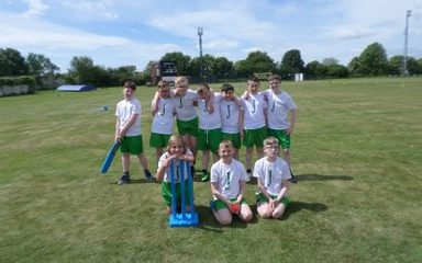 Y6 Kwik Cricket Team