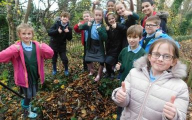 Eco Group and Green Tree Gold Award