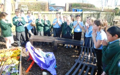 A Garden Liturgy by Year 3